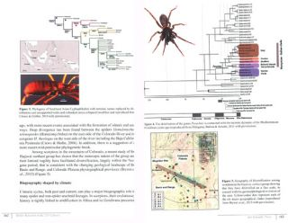 Spider research in the 21st century.
