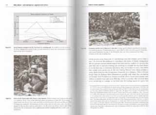 Wild cultures: a comparison between chimpanzee and human cultures.