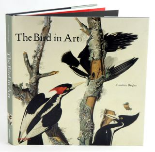 The bird in art. Caroline Bugler