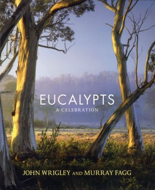 Eucalypts: a celebration. John Wrigley, Murray Fagg
