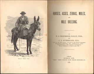 Horses, asses, zebras, mules and mule breeding.