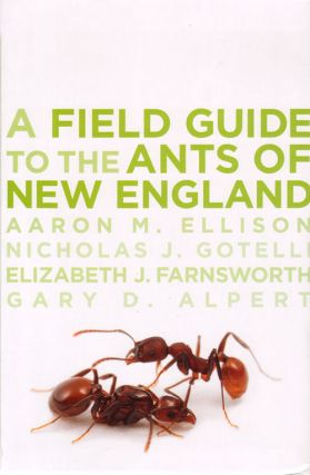 Field guide to the ants of New England. Aaron M. Ellison