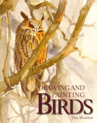 Drawing and painting birds. Tim Wootton