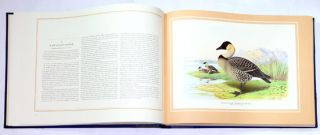 The wildfowl paintings of Henry Jones.