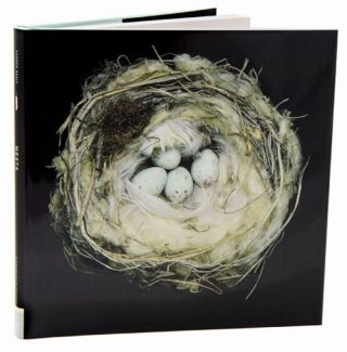 Nests: fifty nests and the birds that built them. Sharon Beals.
