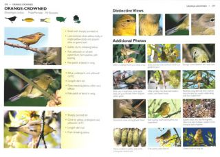 The warbler guide.
