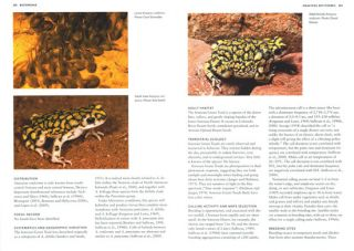 Frogs of the United States and Canada.