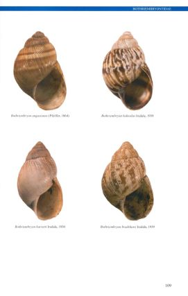 Australian land snails, volume two: a field guide to southern, central and western species.