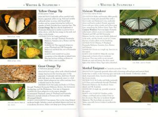 A naturalist's guide to the butterflies of Peninsular Malaysia, Singapore and Thailand.