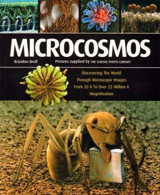 Microcosmos: discovering the world through microscopic images from 20 x to over 22 million x magnification. Brandon Broll.