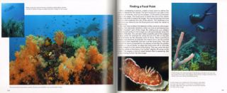 Underwater photography: a guide to capturing the mysteries of the deep.