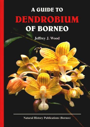 A guide to Dendrobium of Borneo. Jeffrey J. Wood.