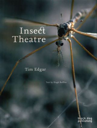Insect theatre. Tim Edgar, Hugh Raffles