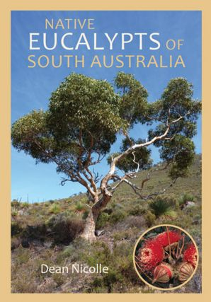Native Eucalypts of South Australia. Dean Nicolle