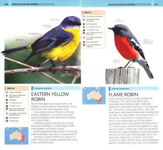 Nature guide birds of Australia.