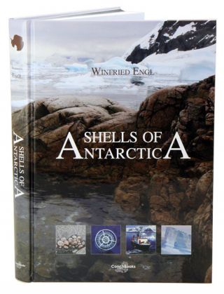 Shells of Antarctica. Winfried Engl