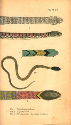 Indian snakes. An elementary treatise on ophiology with a descriptive catalogue of the snakes found in India and the adjoining countries.