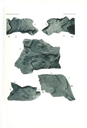 The Bashford Dean Memorial volume, Archaic Fish. Part one: introduction, table of contents and articles one to five.