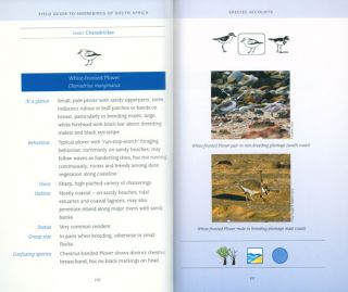Field guide to shorebirds of South Africa.
