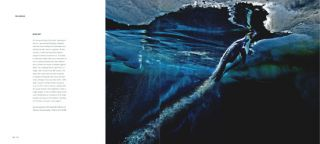 The masters of nature photography: wildlife photographer of the year (volume one).