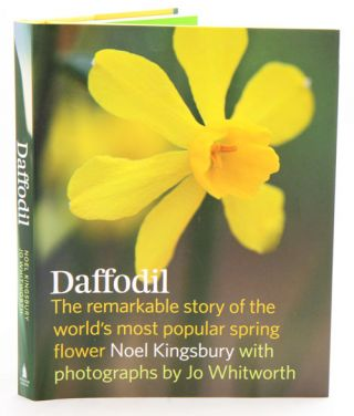 Daffodil: the remarkable story of the world's most popular spring flower. Noel Kingsbury.