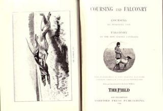 Coursing and falconry.