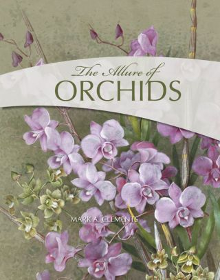 The allure of orchids. Mark A. Clements.