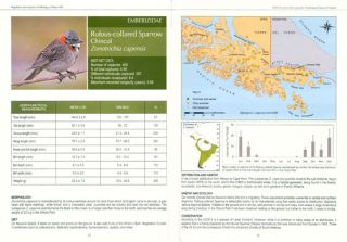 Magellanic Sub-Antarctic ornithology: first decade of long-term bird studies at the Omora Ethnobotanical Park, Cape Horn Biosphere Reserve, Chile.