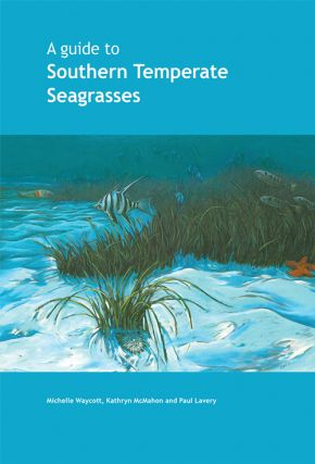 A guide to southern temperate seagrasses. Michelle Waycott, Kathryn McMahon, Paul Lavery