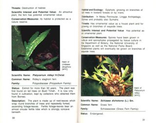 A guide to the threatened plants of Singapore.