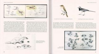 The wildlife artist's handbook.