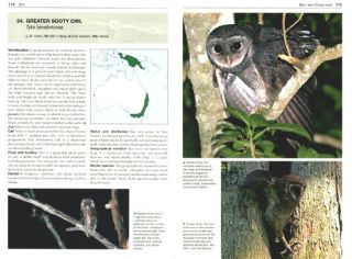 Owls of the world: a photographic guide.