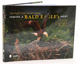 Inside a Bald eagle's nest: a photographic journey through the American Bald eagle nesting...