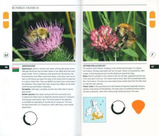 Field guide to the bumblebees of Great Britain and Ireland.