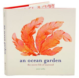 An ocean garden: the secret life of seaweed. Josie Iselin.
