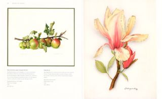 Women artists: images of nature.