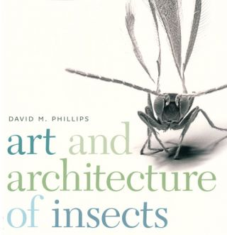 Art and architecture of insects. David M. Phillips