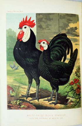 The illustrated book of poultry. With practical schedules for judging, constructed from actual analysis of the best modern decisions.