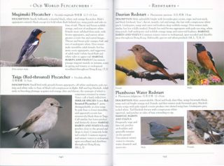 A naturalist's guide to the birds of Hong Kong.