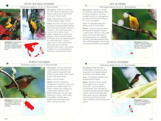 Photographic guide to the birds of Southeast Asia: including Philippines and Borneo.