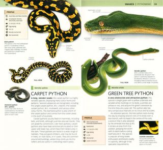 Nature guide snakes and other reptiles and amphibians.