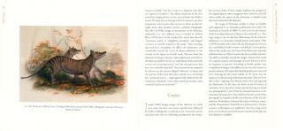 Paper tiger: how pictures shaped the Thylacine.