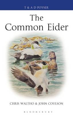 The Common eider. Chris Waltho, John C. Coulson