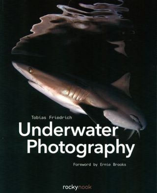 Underwater photography. Tobias Friedrich