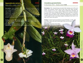 A guide to the orchids of Hong Kong.