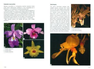 Orchids in South Africa: a gardener's guide.