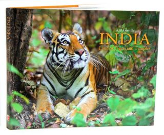 India: land of Tigers and temples