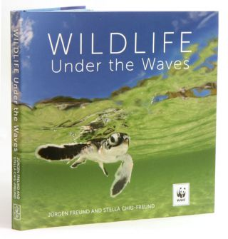 Wildlife under the waves. Jurgen Freund, Stella Chiu-Freund