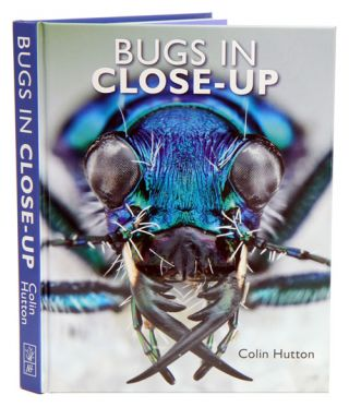 Bugs in close-up. Colin Hutton.