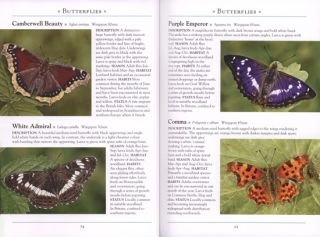 A naturalist's guide to the insects of Britain and Northern Europe.